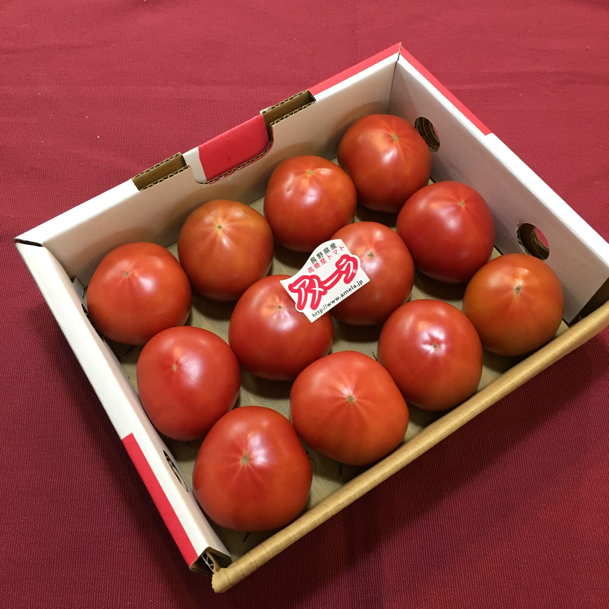 フルーツトマト アメーラ