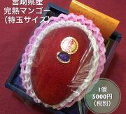 宮崎県産 完熟マンゴー