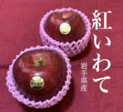 紅いわてリンゴ